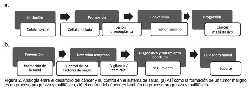 Scielo Saude Publica Control Del Cancer En El Peru Un Abordaje Integral Para Un Problema De Salud Publica Control Del Cancer En El Peru Un Abordaje Integral Para Un Problema
